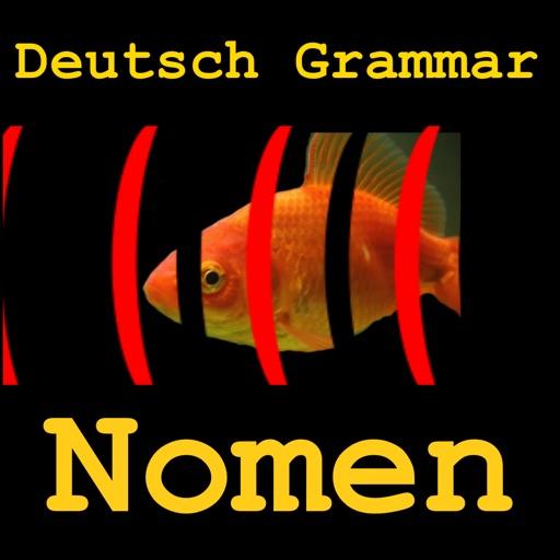 Deutsch Grammar Nomen iOS App