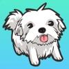 私のマルタの犬のステッカー