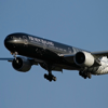 Airfare for Air New Zealand