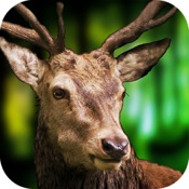 3D Deer Sniper Hunting Game 2017 Resources  Hack – Android and iOS
