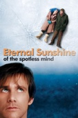 Michel Gondry - Eternal Sunshine of the Spotless Mind  artwork