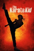 Harald Zwart - The Karate Kid (2010)  artwork