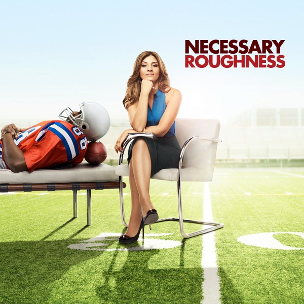 necessary roughness dani and nico relationship trust