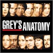 Grey's Anatomy, Saison 4