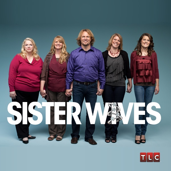 sister wives season 1 episode meet kody and the of duck