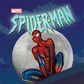 Spider-Man: The Animated Series, Season 1 - Spider-Man: The Animated Series Cover Art