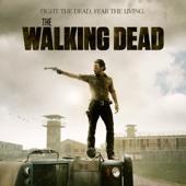 The Walking Dead, Saison 3 (VF)