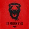Splinter - 12 Monkeys Cover Art