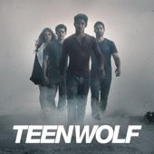 Teen Wolf, Season 4 - Teen Wolf Cover Art