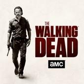 The Walking Dead, Season 7 - The Walking Dead Cover Art
