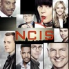 NCIS - Ready or Not  artwork
