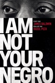 I Am Not Your Negro