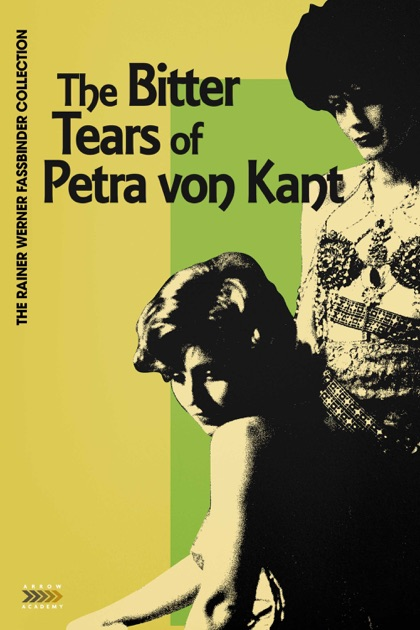 an analysis of fassbinders the bitter tears of petra von kant
