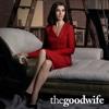 The Good Wife - Ennemis publics  artwork