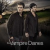 It's Been a Hell of a Ride - The Vampire Diaries Cover Art