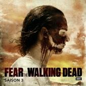 Fear the Walking Dead, Saison 3 (VOST)
