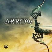 Arrow, Staffel 5