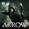 Arrow - Next of Kin  artwork