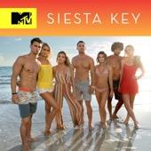 Siesta Key - Siesta Key, Season 1  artwork