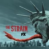 The Strain, Season 3 - The Strain Cover Art