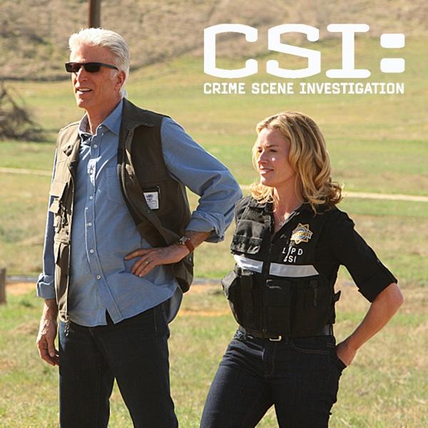 CSI: Crime Scene Investigation (TV Series 2000–2015 ...