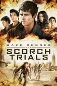 Wes Ball - Maze Runner: The Scorch Trials  artwork
