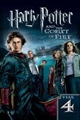 Mike Newell - Harry Potter and the Goblet of Fire  artwork