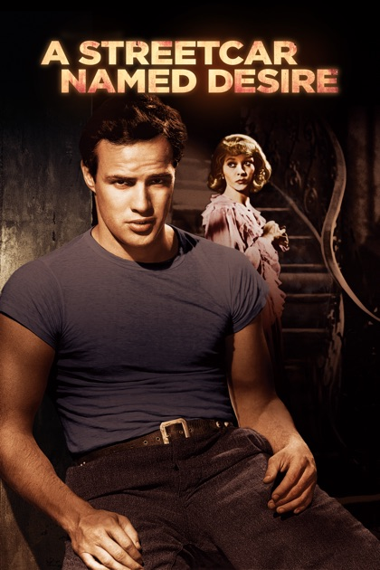 What is the importance of setting in A Streetcar Named Desire?