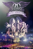 Aerosmith - Aerosmith: Rocks Donington 2014  artwork