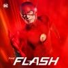 The Flash - Finish Line  artwork