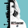 Grey's Anatomy - Back Where You Belong  artwork
