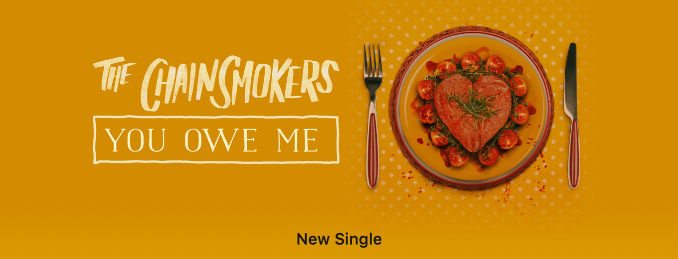 You Owe Me - Single by The Chainsmokers